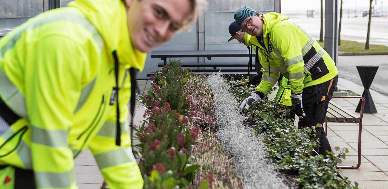 Vi hjälper dig med Mark- och trädgårdsarbeten.