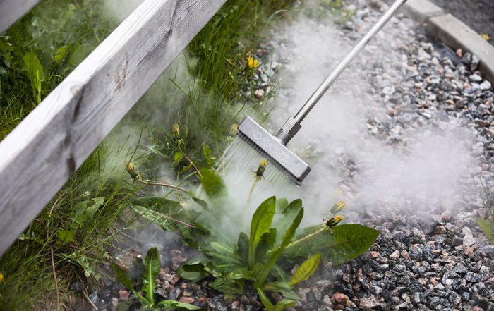 Miljövänlig ogräsbekämpning utan kemikalier